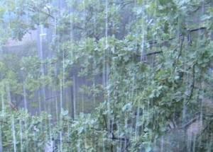 pogoda-moldova