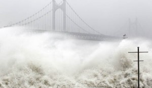 Typhoon Dianmu lands on Korea