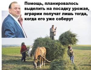 Бумаков сельское хозяйство
