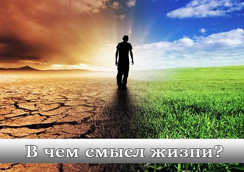 Во сколько лет человек находит смысл жизни?
