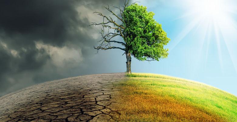 В 2019 году мир окончательно признал проблему изменения климата