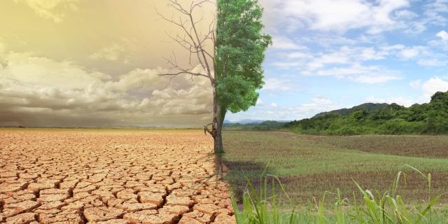 Зеленое безумие - может обвалить мировую экономику?
