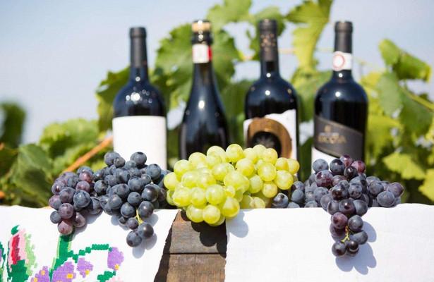 Правительство РФ одобрило поправки в законопроект о продаже вина из ЕАЭС на специализированных ярмарках