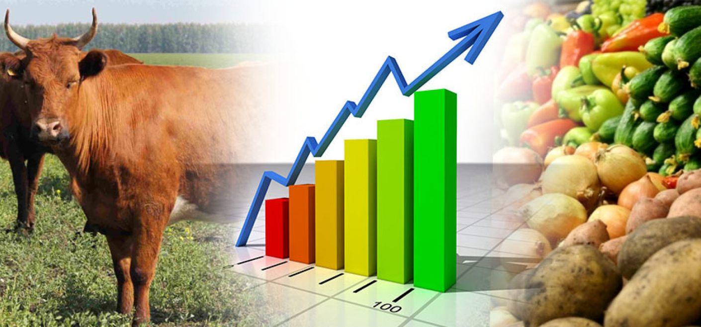 Сельхозпроизводство в Казахстане увеличилось на 5,7%